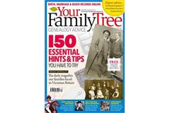 Your Family Tree ()