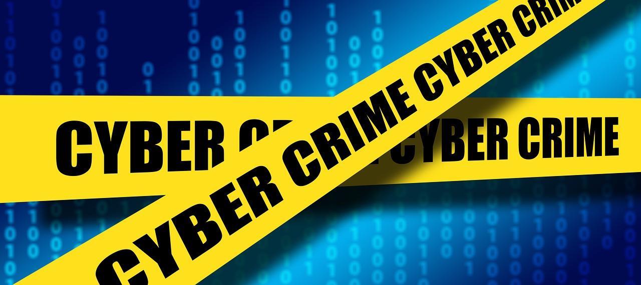 Cyber crime ()