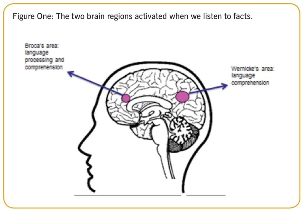Brain regions figure one ()