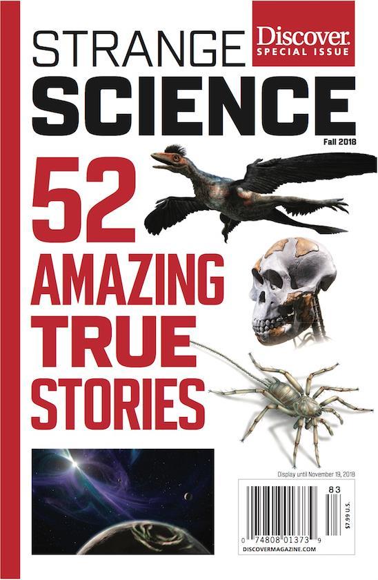 Strange Science ()